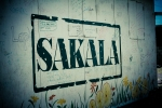 Sakala_MoringaGarden_print-17
